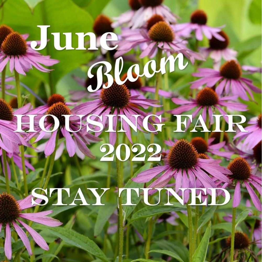 JUNE BLOOM 2022 for website carousel - FINAL