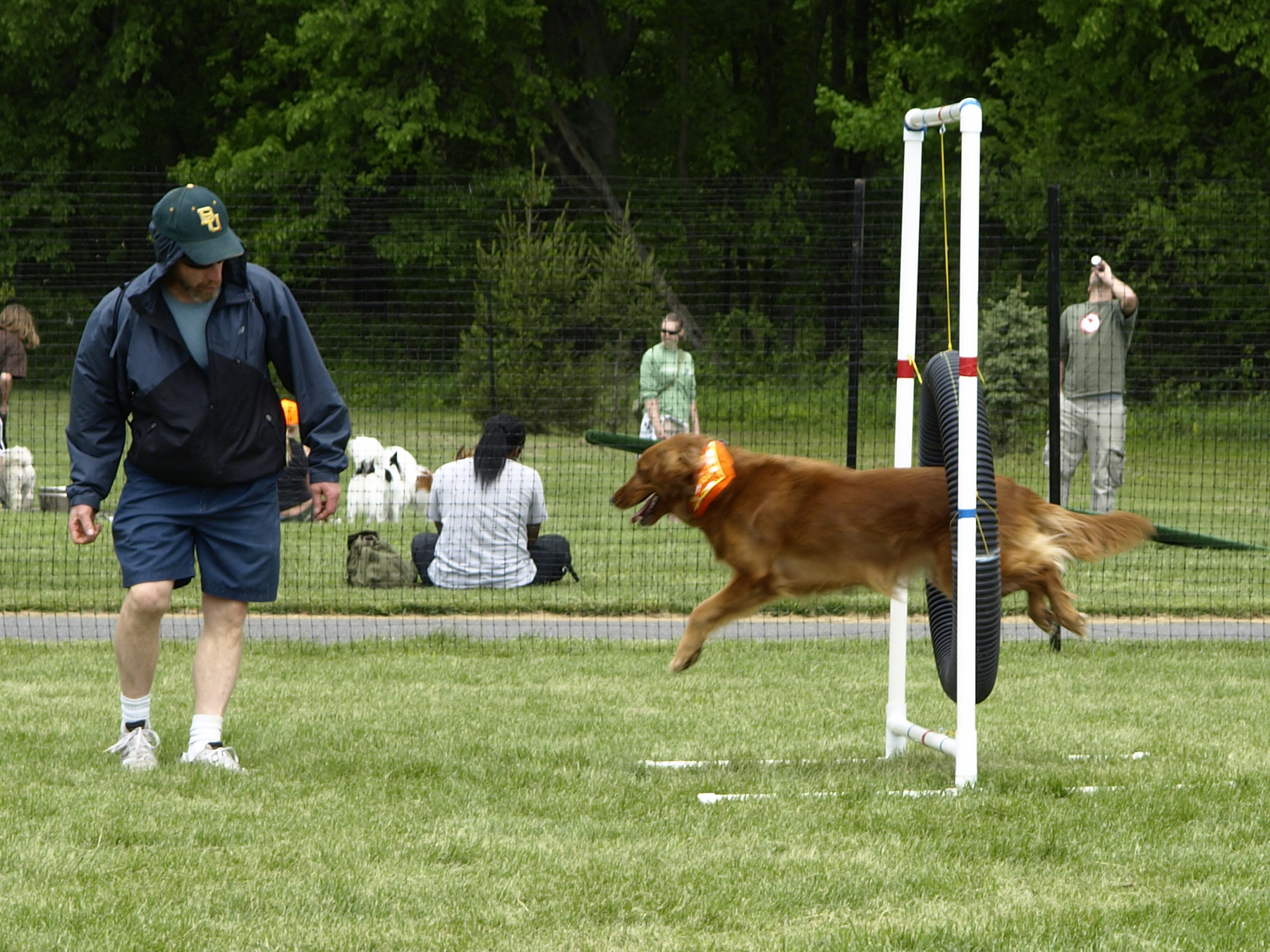 Bark in the Park2.jpg